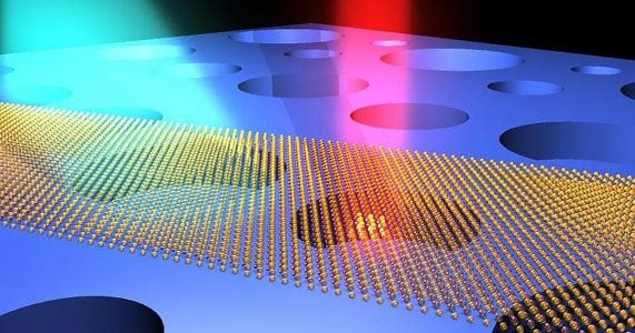 Dynamic Range of Nanoresonators on Par With Animal Hearing