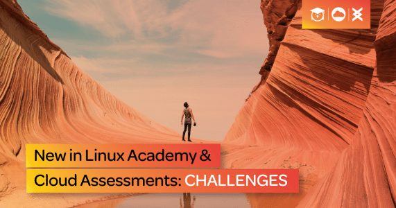 Skills-based Challenges for the realworld