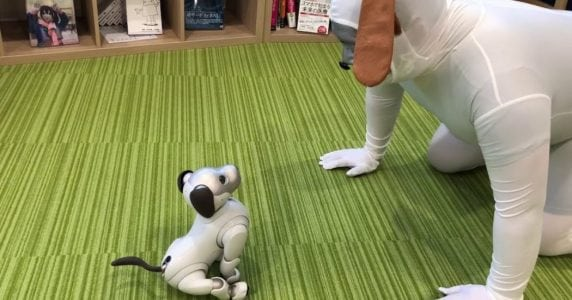 Video Friday: Robot Barber, Untethered iCub, and Aibo's Best Friend
