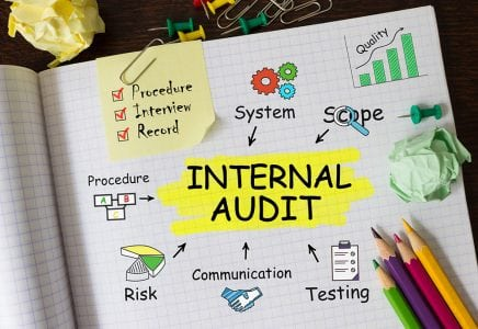 An Internal Plan Audit Team Essential for Anticipating Changes