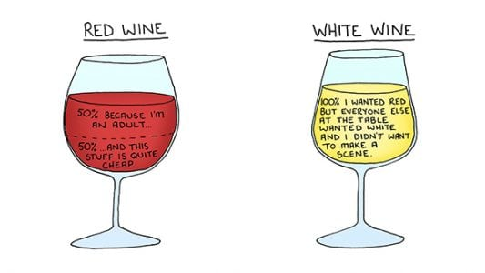What Your Drink Says About You, As Told Through Brutally Honest Illustrations