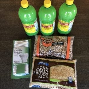 I spent $67.46 on groceries this week + you were right about Big Lots!!