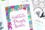 Free Printable Coloring Gratitude Prompts Binder ($27 value!) – Info Money Manage