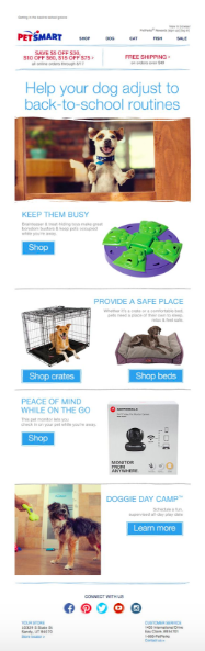 Learn about back-to-school email marketing by looking at this Petsmart example.