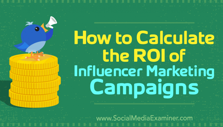 How to Calculate the ROI of Influencer Marketing Campaigns – Info Marketing