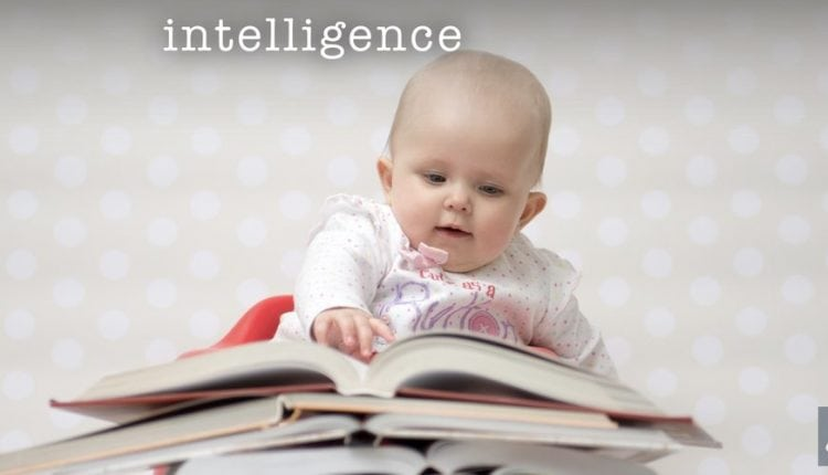 The Nature of Intelligence – Info AI