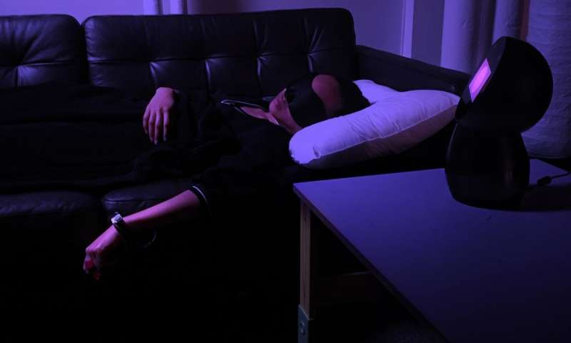 A system for influencing hypnagogia micro-dreams