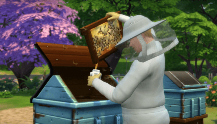 Sims Disturb Their Bees Less Frequently, And Other Patch Notes – Info Computing
