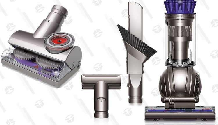 This Dyson Ball Will Make Short Work of Pet Hair, and It's On Sale For One Day Only – Info Tips and Tricks