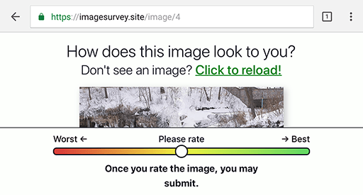 Screen shot of the survey with an image clipped at the bottom by the viewport and rating slider.