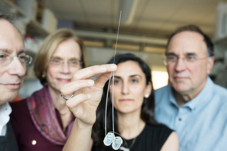 Ultrathin needle can deliver drugs directly to the brain   Social