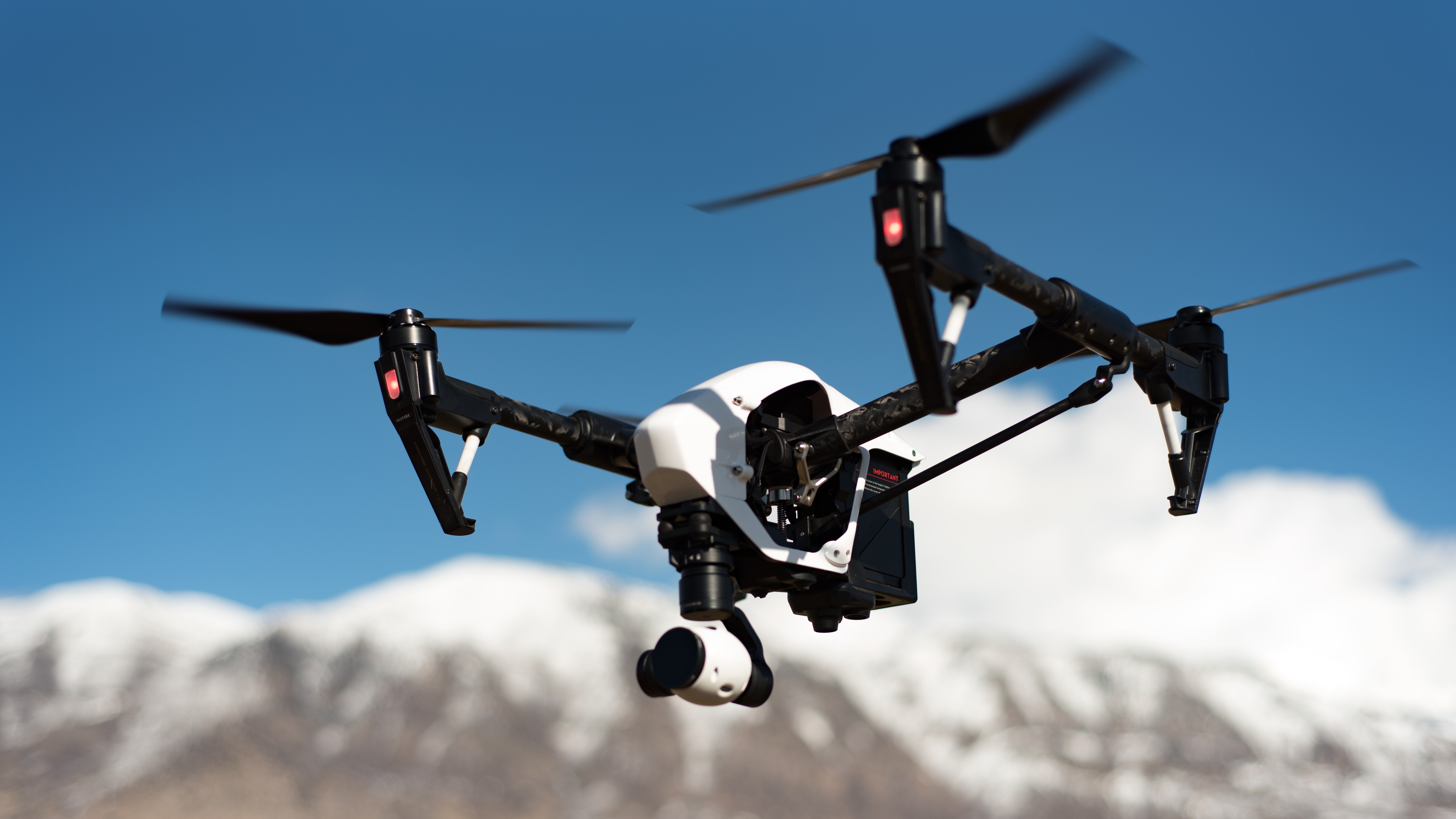 AI drones could work as aerial sheepdogs to herd birds away from airports   Innovation & Feature, ONLY infoTech
