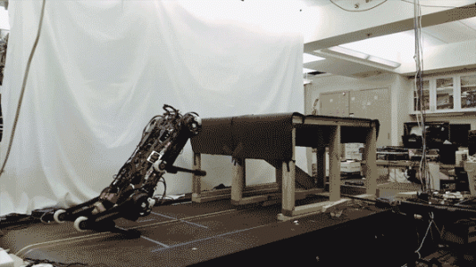Blind Cheetah 3 robot can climb stairs littered with obstacles | Robotics