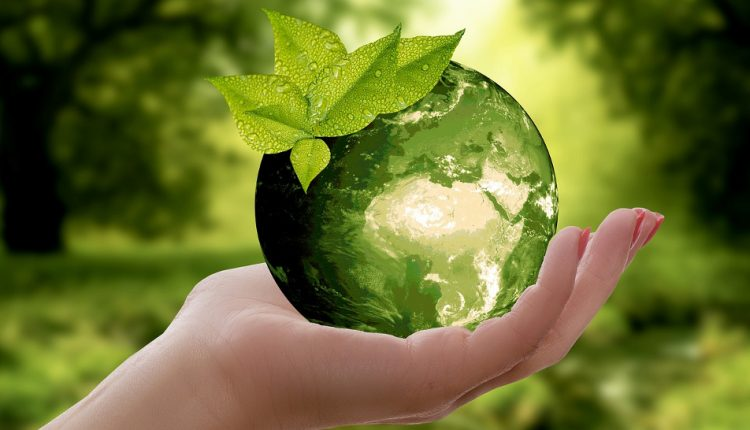 The well-rounded benefits of the circular economy | Innovation & Feature