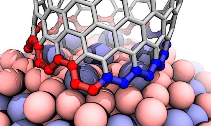 Theorists find mechanism behind nearly pure nanotubes from the unusual catalyst | Tech Science – Info News