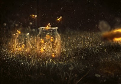 How to Create a Glowing, Fireflies Photo Manipulation in Adobe Photoshop | How To