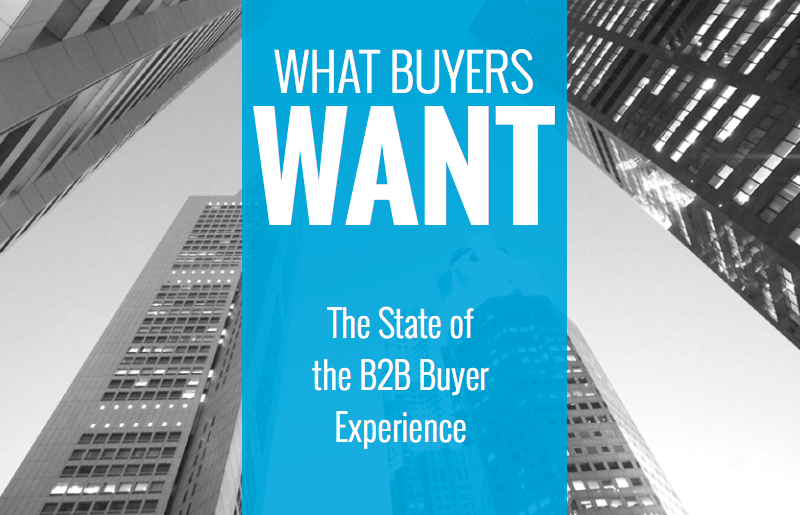 State of the B2B Buyer Experience