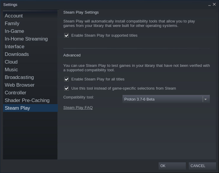 Steam Beta Settings