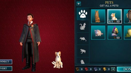 Harry Potter: Hogwarts Mystery Adds Magical Pets Side Quest | Gaming News