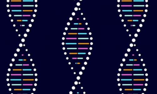 How a machine could mark the turning point for DNA data storage