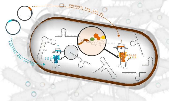 Machine learning provides new insights into cellular biology | Robotics