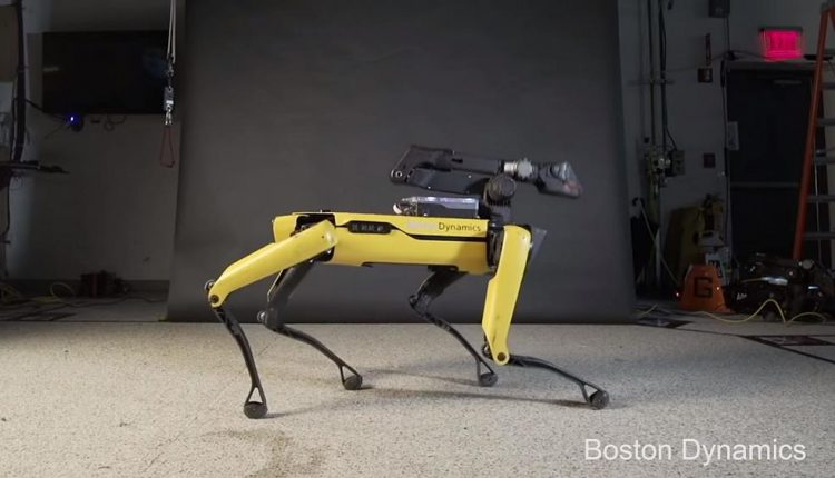 This robo-dog has better dance moves than most humans | Innovation