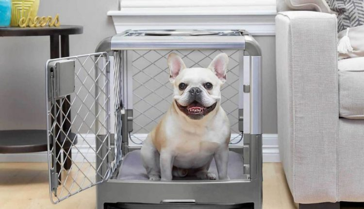 Diggs Revol Collapsible Dog Crate | Tech Gadgets
