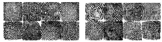 IMG 5 - Unlock Any Smartphone With These Fake Fingerprints