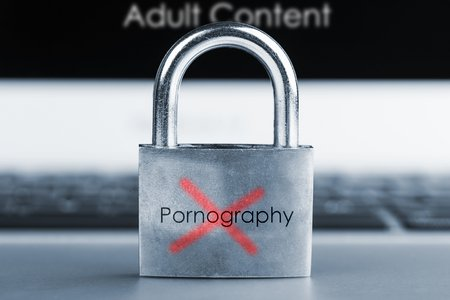 101 suspects nabbed on charges of illegal pornography in Korea
