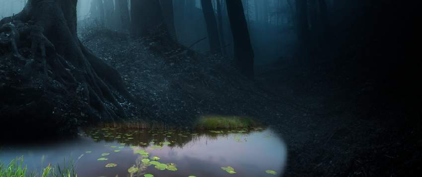 fantasy digital art - pond masking