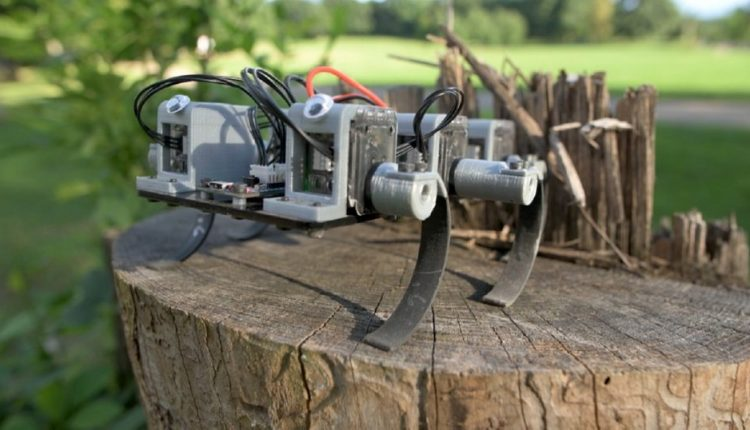 MiniRHex Makes Wiggly-Legged Unstoppability Tiny and Affordable