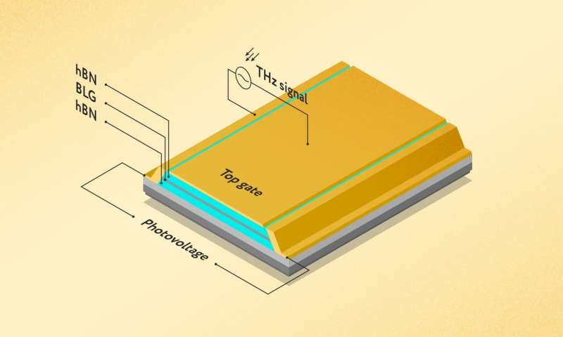 New T-wave detector uses waves of the electronic sea in graphene