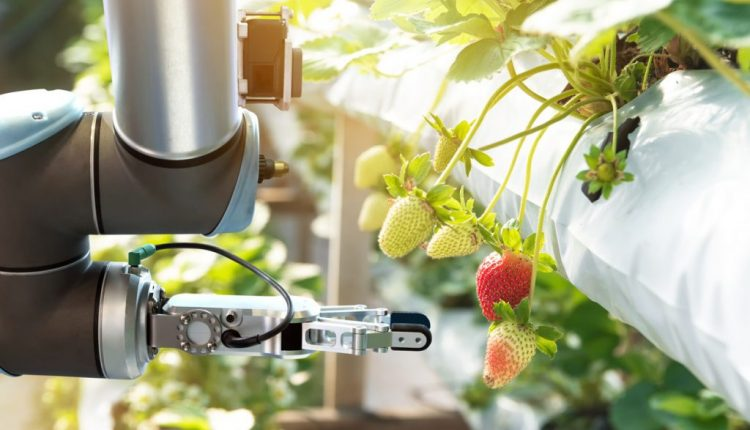 4 Ways Robotics Will Affect Agriculture in 2019