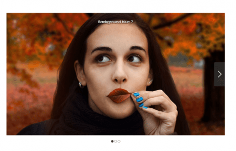 Samsung fakes test photo by using a stock DSLR image