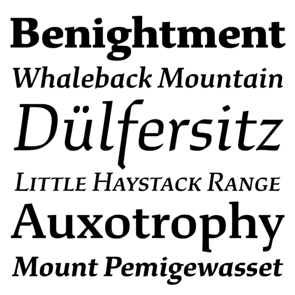 font design xyz-study-01-words