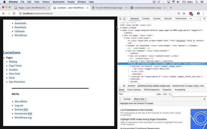 WordPress plugin development project in action