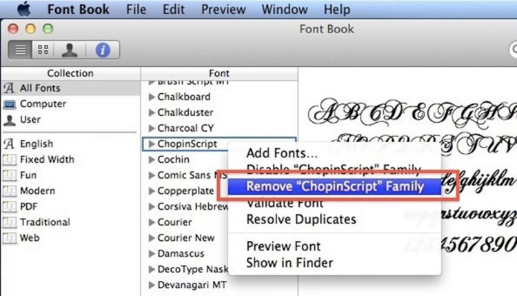 Remove Unnecessary Startup Items and Fonts