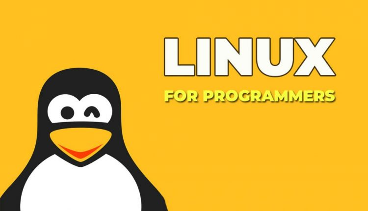 10 Reasons why Linux is better for programmers and developers