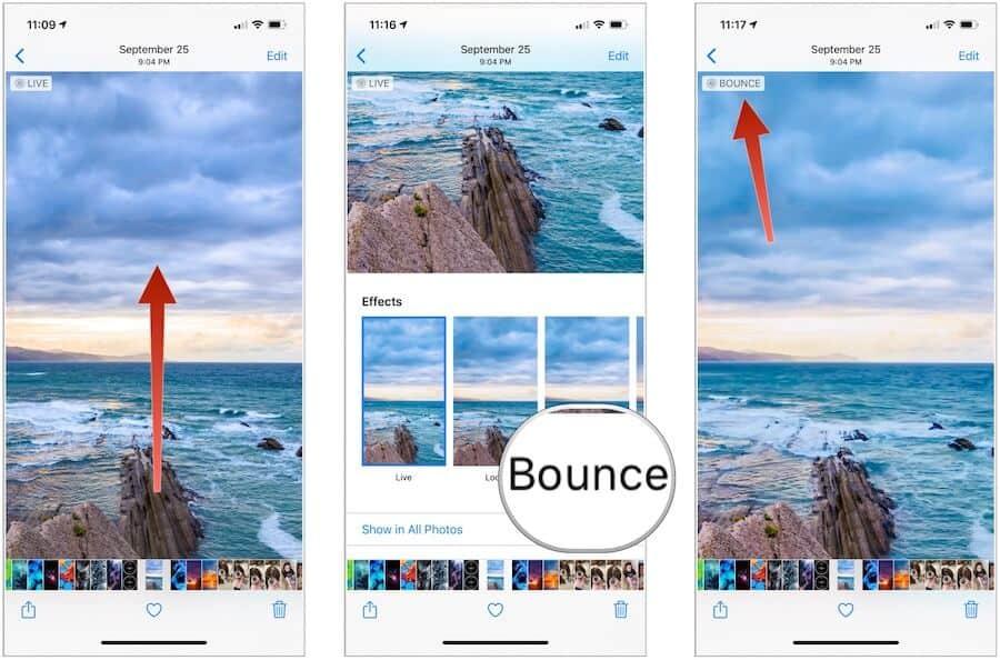 Live Photos bounce