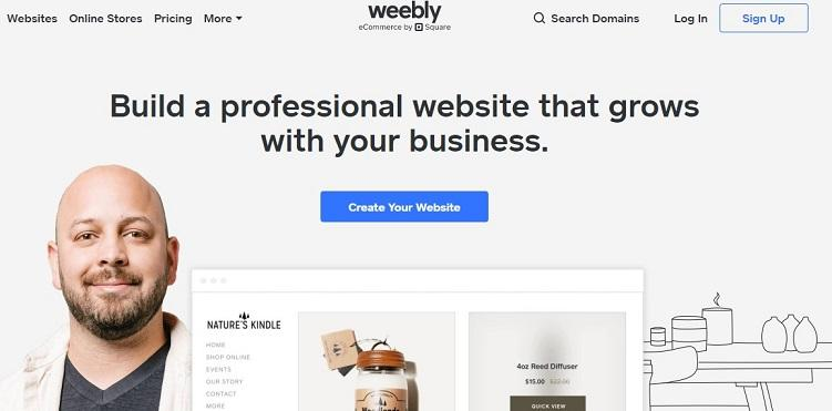 basic website by Weebly image