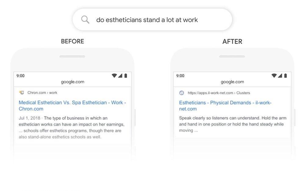 Google BERT update Example 2