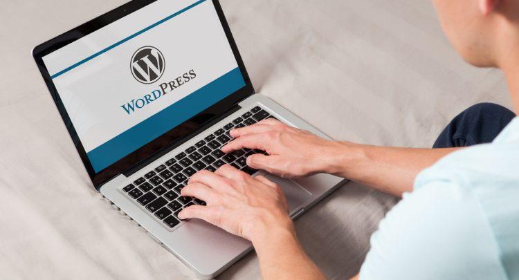 XSS plugin vulnerabilities plague WordPress users