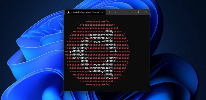 How to Install Windows Subsystem for Linux on Windows 11